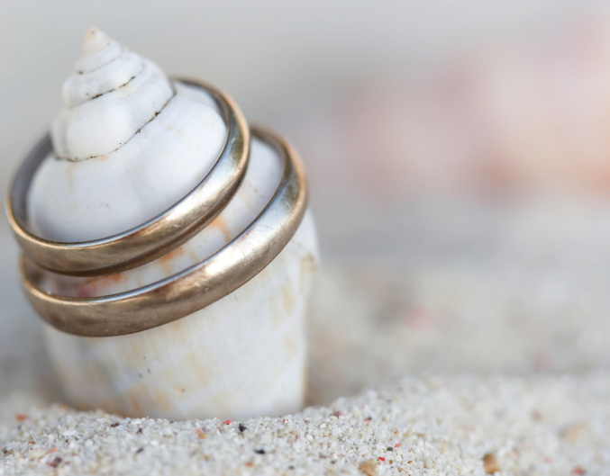 Beach shell with two engagement rings on top in the sand